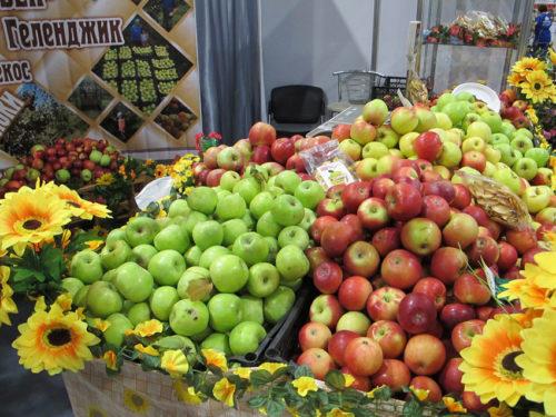 Makeat omenat ovat Krasnodarin alueen ylpeys.